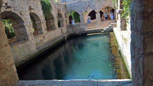 Vasca pesci 2 Hektorovic - Stari Grad
