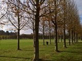 Saint Germain en Laye - parco del castello