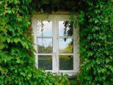 window-1679344__340
