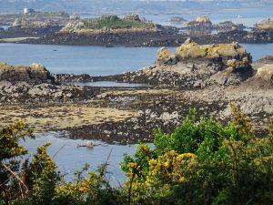 isola di Bréhat - scogliere