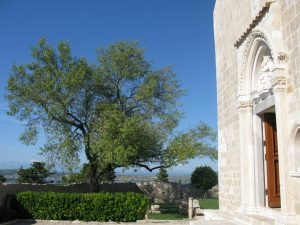 Cokovac monastero isola Pasman