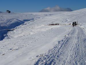 strada con neve Monte Pora